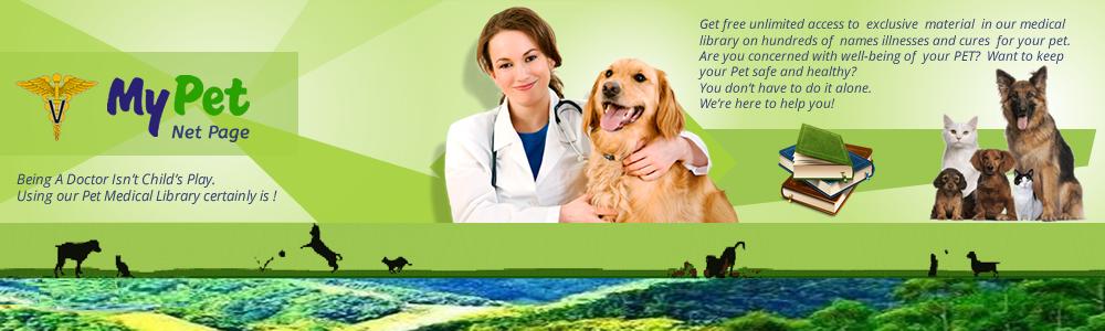 Cambridge American and Care Vitamins Fornecedor Mundial de Produtos Farmacêuticos